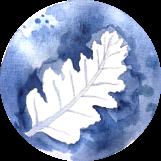 IMG_1892 2