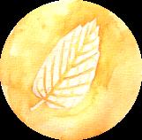 IMG_1895 2
